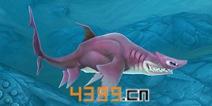 饥饿鲨世界3D无沟双髻鲨属性详解 鲨鱼大全