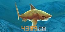饥饿鲨世界3D虎鲨属性详解 鲨鱼大全
