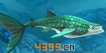 饥饿鲨世界3D鲸鲨属性详解 鲨鱼大全