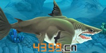 饥饿鲨世界3D巨齿鲨属性详解 鲨鱼大全