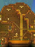 泰拉瑞亚蜂巢房屋建筑 蜂巢房屋建造图纸