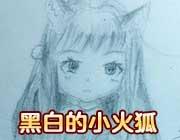 西普大陆手绘 黑白的小火狐
