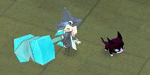 魔女之泉2猫怎么抓 witchspring2四只猫宠物抓捕方法解析