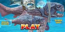 饥饿鲨:进化邓氏鱼吃20只大鸟任务怎么做 任务攻略