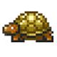 泰拉瑞亚黄金乌龟