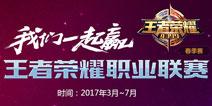 4399王者荣耀2017KPL春季赛专题