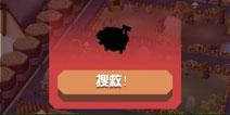 疯狂动物园安卓1.7.0下载 拯救濒危动物
