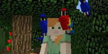 我的世界pc版鹦鹉坐在肩上