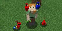 我的世界鹦鹉怎么驯服
