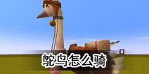 迷你世界鸵鸟怎么骑
