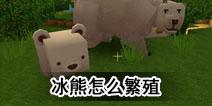 迷你世界冰熊怎么繁殖