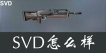 据点守卫放逐游戏SVD怎么样 SVD狙击枪好不好用