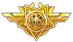 闪弹少女陆战队勋章