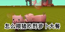 迷你世界怎么喂猪吃胡萝卜大餐