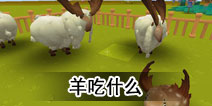 迷你世界羊吃什么