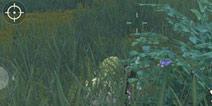 荒野行动快速爬行技巧攻略趴着怎么卡加速bug
