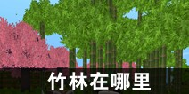 迷你世界竹林在哪里 竹林怎么找
