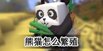 迷你世界熊猫怎么繁殖 熊猫有什么用