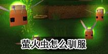 迷你世界萤火虫怎么驯服 萤火虫有什么用