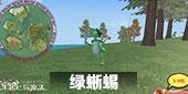 创造与魔法绿蜥蜴