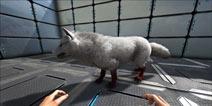 方舟生存进化恐狼怎么驯服 手机版恐狼驯服方法