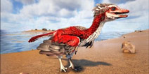 方舟生存进化始祖鸟