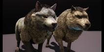 方舟生存进化教程:单机快速获得高级宠物方法