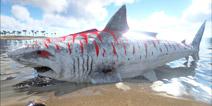 方舟生存进化巨齿鲨