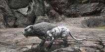 方舟生存进化剑齿虎怎么驯服 手游方舟剑齿虎哪里有
