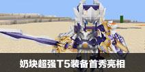 成就新世界王者 奶块超强T5装备首秀亮相