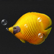 明日之后红海黄金蝶在哪钓 红海黄金蝶怎么钓