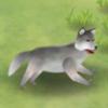 挨饿荒野狼怎么杀 单挑荒野怎么杀狼