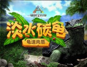 龟速肉盾—淡水碳龟 【驯龙一分钟】54
