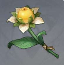 原神甜甜花