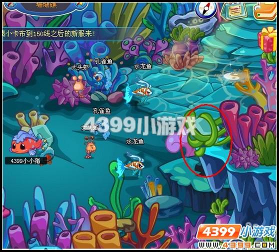 卡布西游小银鱼在哪里?