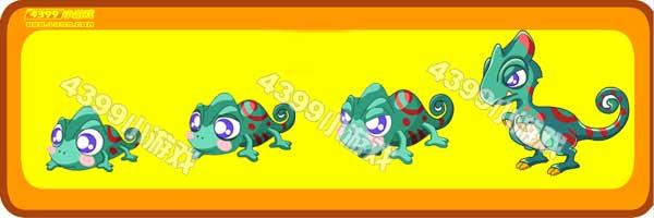 卷尾蜥蜴-变色龙变异进化图鉴