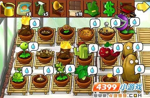 植物大战僵尸禅境花园
