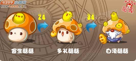 洛克王国寄生菇菇进化图
