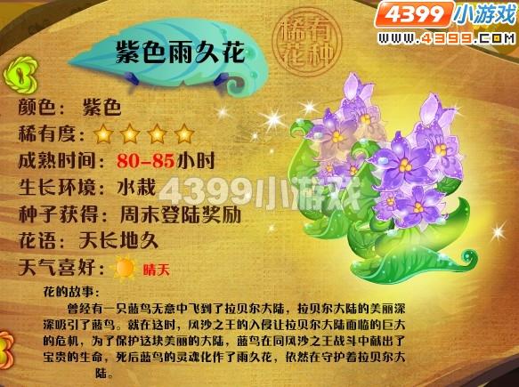 小花仙紫色雨久花
