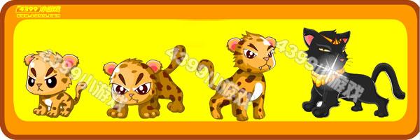 花豹-埃及黑豹变异进化图鉴及获得方法