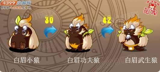 洛克王国白眉小猿进化图