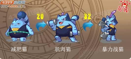 洛克王国减肥猫进化图