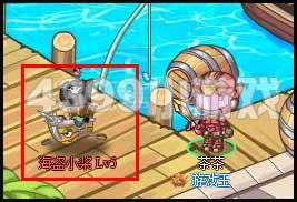 西普大陆海盗小桨在哪 怎么抓