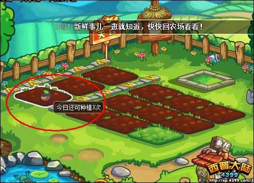 西普大陆怎么看农场土地的种植次数?