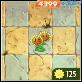 植物大战僵尸2双胞向日葵