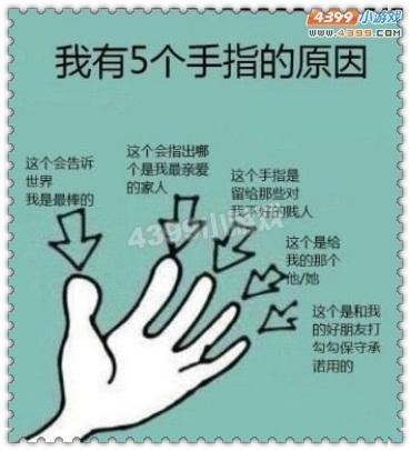 阿哲吐槽-5根手指的真正含义图片