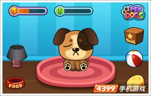 小狗,它干净、快乐、又健康,可爱卡通的游戏画面配合简单的操高清图片