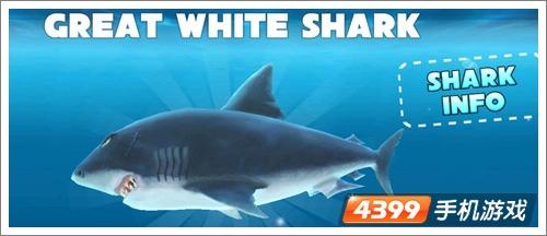 嗜血狂鲨进化玩不了 安卓解决办法