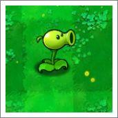 植物大战僵尸豌豆射手图鉴