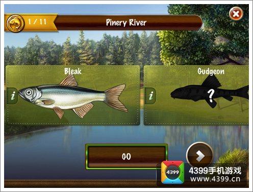 去钓鱼评测
